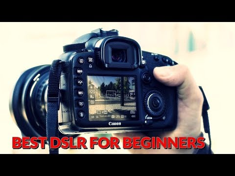 Top 3 Best dslr camera for beginners in india - Best dslr under 30000 - 2017 [Hindi]