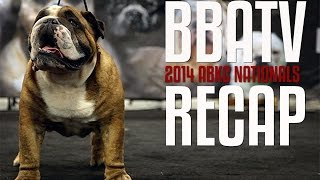 American Bully Kennel Club Nationals Highlights 2014