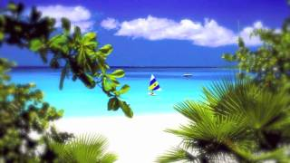 Pantha Vibes International {2010} - Anguilla HD