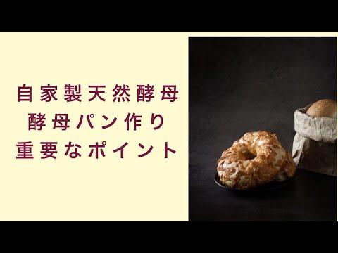 【自家製天然酵母】酵母パン作りにおける重要なポイントとは フルーツ酵母 自家製天然酵母 パン教室 教室開業 大阪 奈良 東京 福岡 名古屋