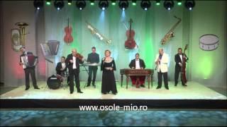 15.La Chilia-n port- Karaoke Negativ