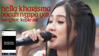 Download Bocah Ngapa Ya - Wali Cover By Nella Kharisma Mp3