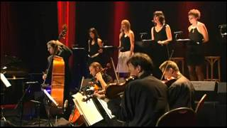 Wim Mertens Ensemble - Struggle for Pleasure