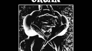 Organ - Kani Kertoo
