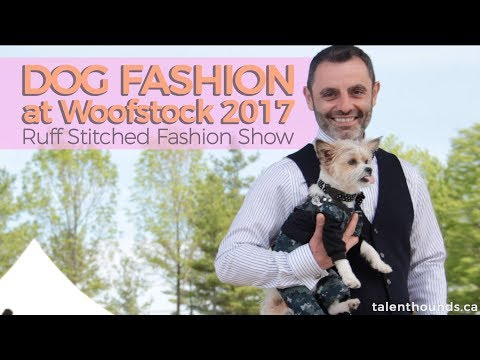 The Fun and Adorable Styles of the Ruff Stitched Fashion Show- Woofstock 2017