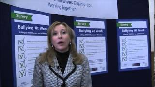 Bullying At Work Survey, Prof Maura Sheehan, NUI Galway