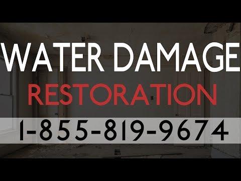 Water Damage Restoration St Petersburg FL |  Best Local Water Damage Restoration Services
