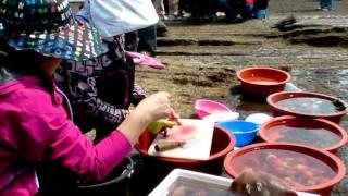 Корейские русалки за разделкой хве