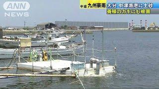 大分県では大雨の影響で漁場に土砂が流れ込み、特産の牡蠣(かき)に被...