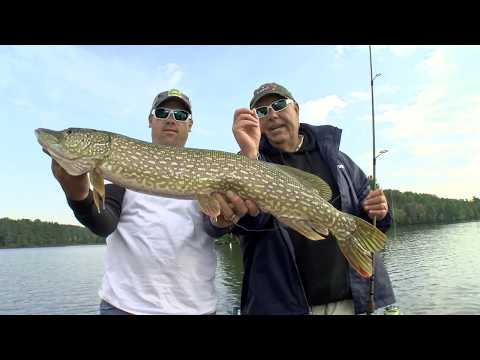 41_2017 - Fall Tour Of Vilas County - FULL EPISODE