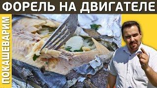 ФОРЕЛЬ НА ДВИГАТЕЛЕ АВТО / Рецепт от Покашеварим / Выпуск 198