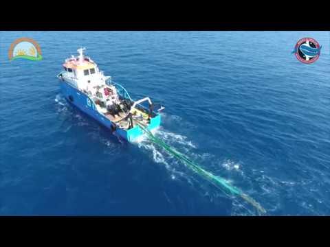 Akdeniz Su Ürünleri Tanıtım Filmi 2016