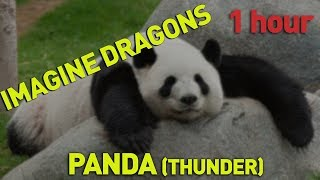 Imagine Dragons - Panda (Thunder) 1 hour