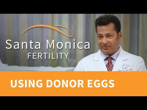 Egg Donation: About the Process, Finding Donor Eggs, and IVF