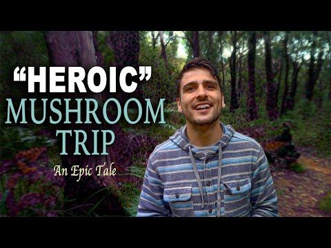 My First Heroic Mushroom Dose Trip Report | 5.5g w/ Lemon Tek