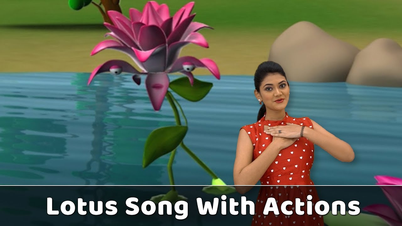 Lotus Flower Song With Actions Flower Rhymes For Babies Learn