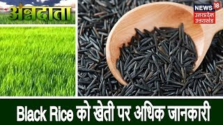 Annadata | Black Rice को खेती पर अधिक जानकारी | 17 Dec 2018