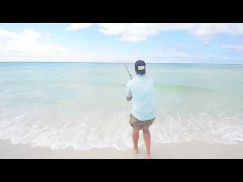 Drone Fishing For Sharks With Will Edwards Of Mississippi