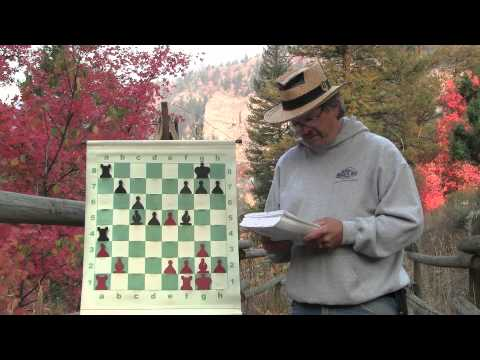 Chessercises: Step by Step Reading Chess Board Positions from IM Jeremy Silman