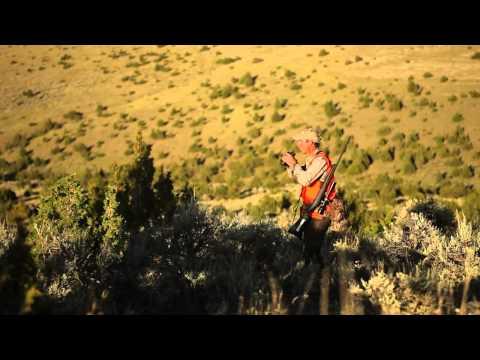 Five Proven Strategies For Hunting Trophy Mule Deer
