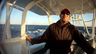 Rough Troll on a 42 Yellowfin