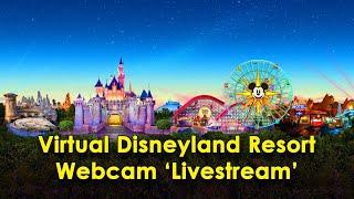 Фото 'Live' Disneyland Stream Virtual Web Cam (Sleep, Relax, Study At DL, DCA, \u0026 Downtown Disney)