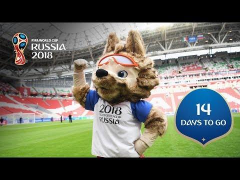 14 DAYS TO GO! Zabivaka, Russia 2018's Official Mascot
