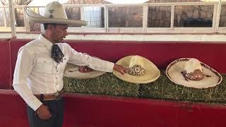 Sombrero charro artesanal 4da30c713fc