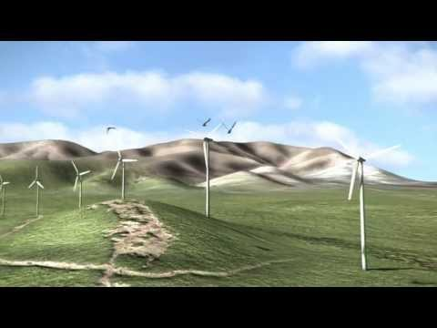 Wind and tidal Energy Animation