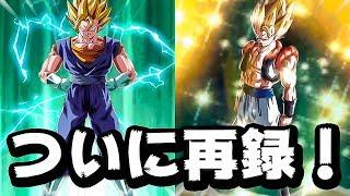【ドッカンバトル】LRゴジータ&LRベジット再録記念! LRパーティで遊んでみた!【Dragon Ball Z Dokkan Battle】