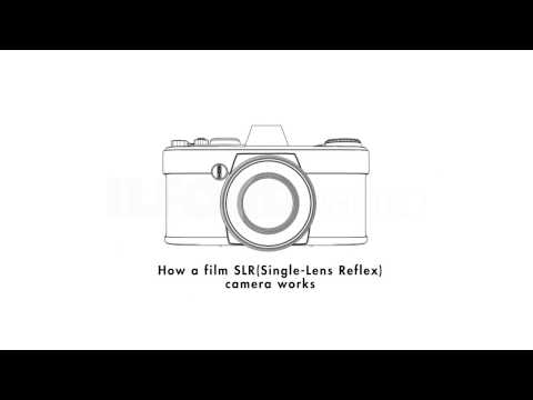 This Simple Animation Shows You How an SLR Works