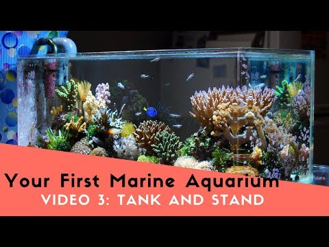 How To Set Up Your First Marine (Saltwater) Aquarium, Video 3: Choosing Your Tank and Stand