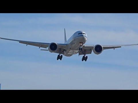 50+ Plane Landings