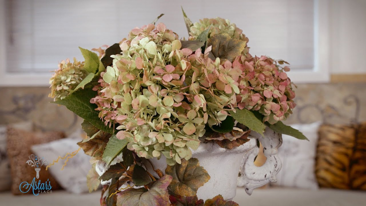 How To Dry Hydrangeas With Glycerin Youtube