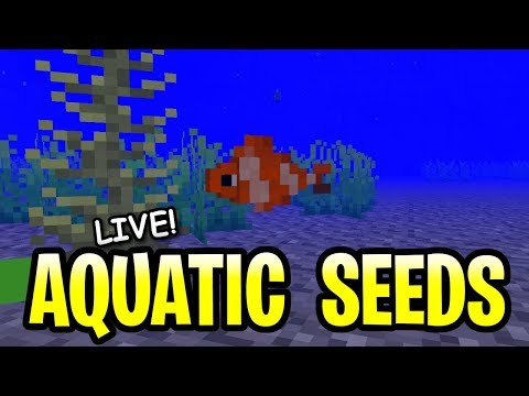 Minecraft Aquatic Update Seeds! The Perfect Ocean Seed Hunt 1 14- PE, PS4,  Xbox & Switch
