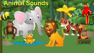 Learn animal names and sounds with fun I Educational kids video