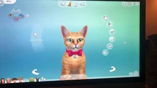 Max and Mya Have a Kitten on The Sims!