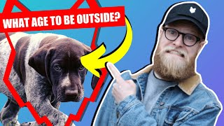 WHEN CAN MY GERMAN SHORTHAIRED POINTER PUPPY GO OUTSIDE OR IN THE GARDEN?
