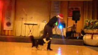 Ria-dog dancing / Hotel Therma DS :-))