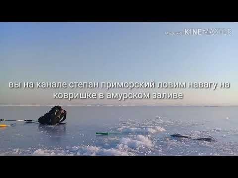 Рыбалка в Амурском заливе