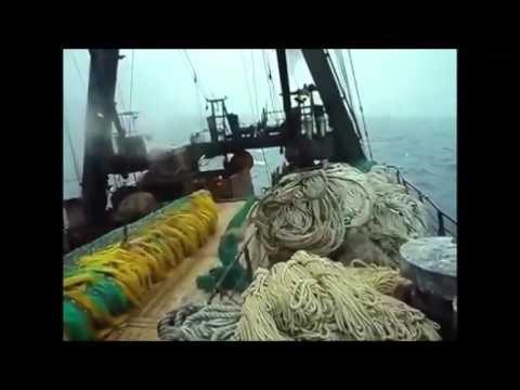 Данков Александр-матрос добычи , город Находка . Trawlerman Aleksandr Dankov