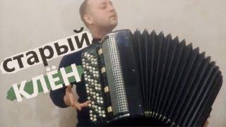 Старый Клён на Баяне / Amazing Russian Song on the Accordion