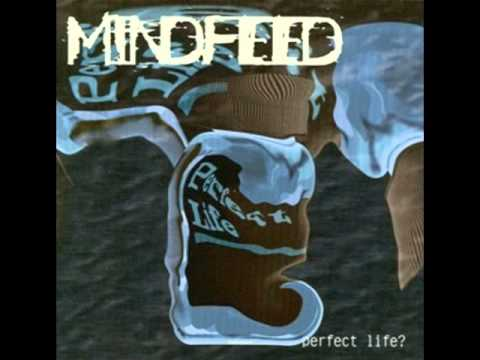 Mindfeed - The Beckoning