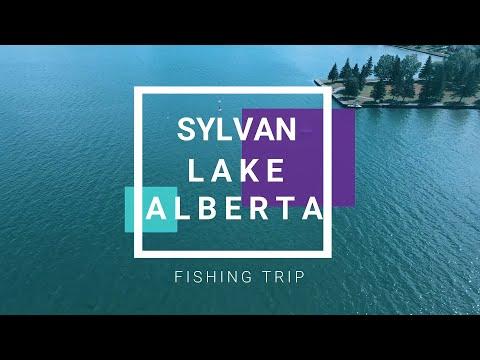 SYLVAN LAKE   SHORT FISHING TRIP   CATCHING WALLEYES  