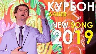 Курбон Алиев   Хой булбул 2019  Qurbon Aliev   Hoy Bulbul 2019