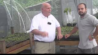PuertoRico Working Aquaponics Farm
