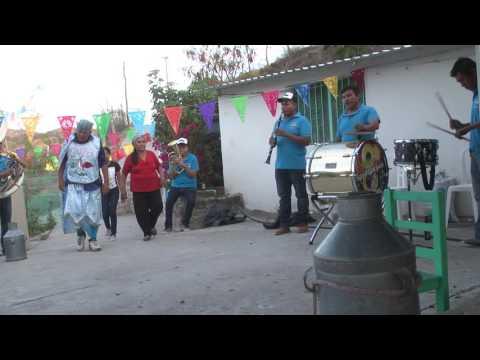 MUSICA DE JARIPEO puro zapateado con Banda San Francisco de Huehuetlan el Chico