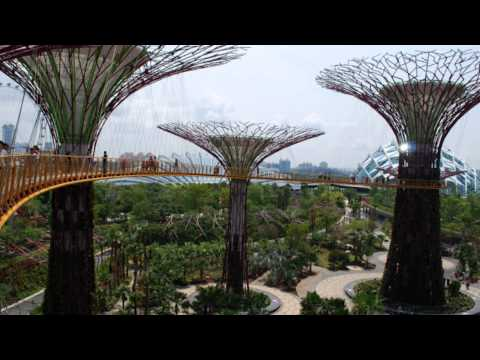 Singapoure Supertrees