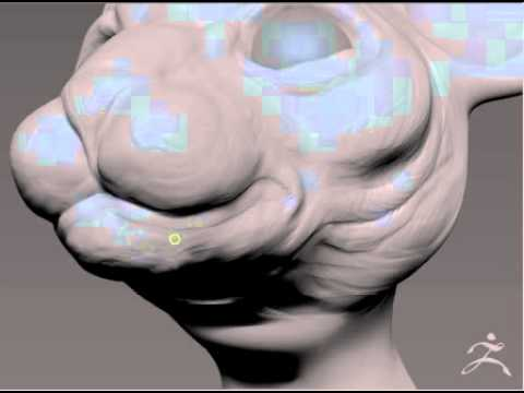 Sphynx - Zbrush Timelapse Sculpt