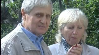 Лотенков  Сливы Груши Яблоки